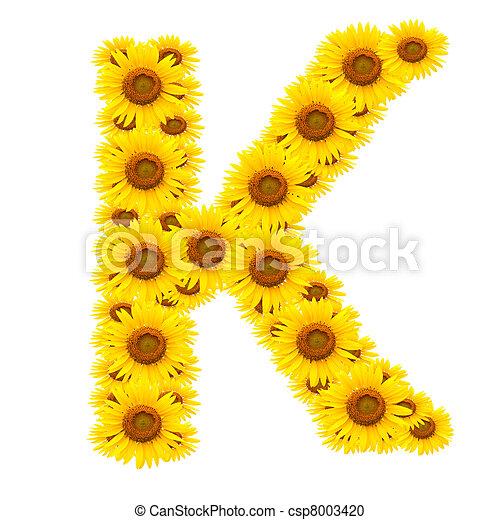 alphabet K , sunflower  - csp8003420