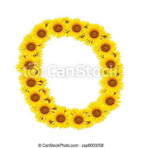 alphabet O , sunflower  - csp8003058