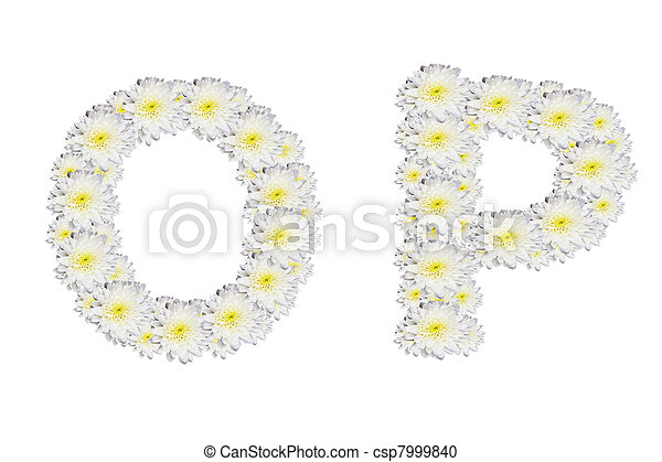 alphabet OP , White Flower isolated on white background  - csp7999840