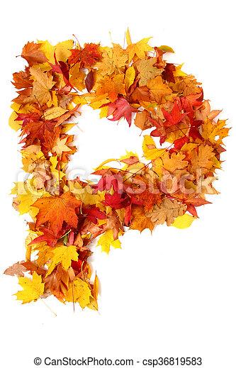 alphabet sign from autumn leaf - csp36819583