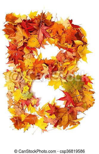 alphabet sign from autumn leaf - csp36819586