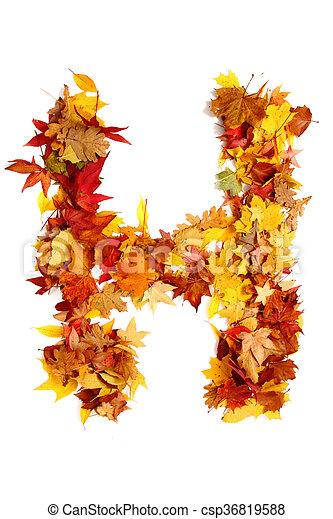 alphabet sign from autumn leaf - csp36819588