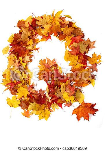 alphabet sign from autumn leaf - csp36819589