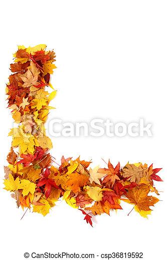 alphabet sign from autumn leaf - csp36819592