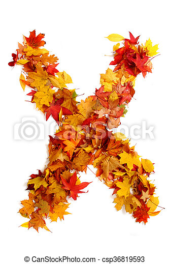 alphabet sign from autumn leaf - csp36819593