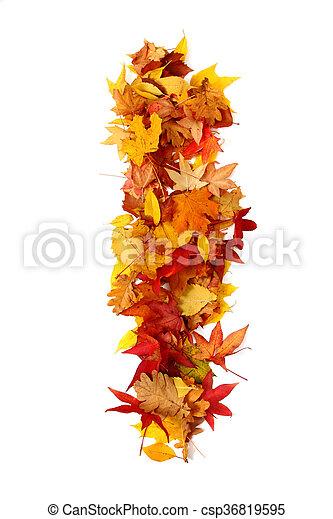 alphabet sign from autumn leaf - csp36819595