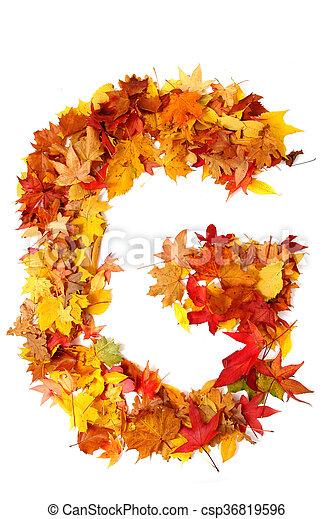 alphabet sign from autumn leaf - csp36819596