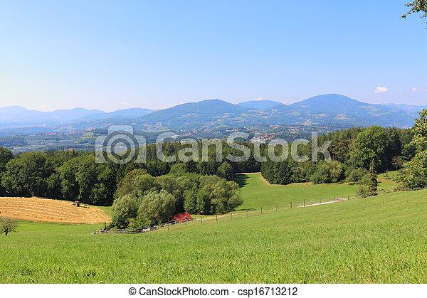 alpine pasture - csp16713212