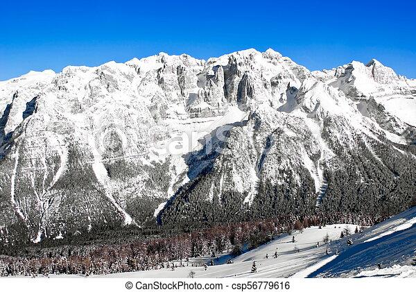 Alpine winter landscape - csp56779616