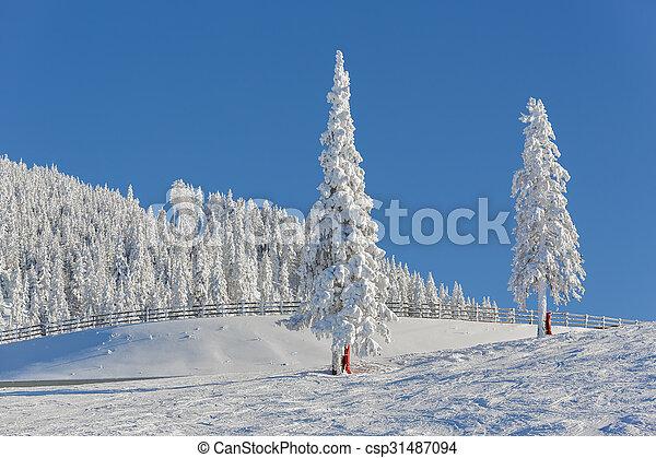 Alpine winter landscape - csp31487094