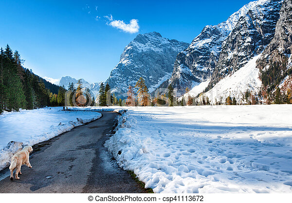 Alps mountain landscape in the late autumn season. Snow fall early winter and late autumn. - csp41113672