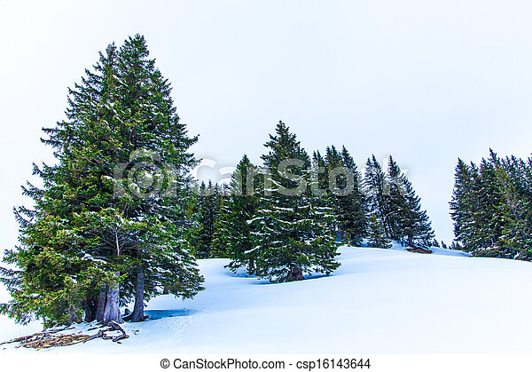 Alps mountain landscape. Winter lan - csp16143644