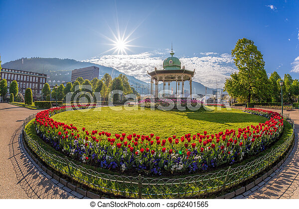 Altan with red tulips during spring time in Bergen, Norway - csp62401565