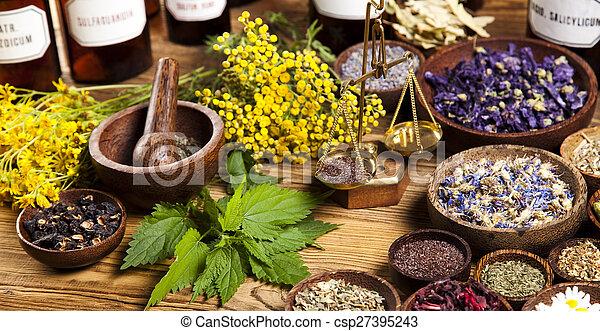 Alternative medicine, dried herbs - csp27395243