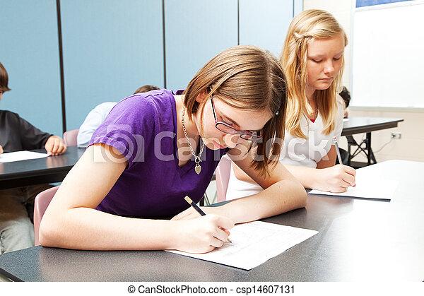 alto, acadêmico, escola, testar - csp14607131