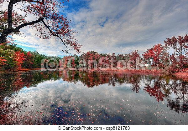 Un paisaje de gran alcance dinámico de un estanque maryland en otoño - csp8121783