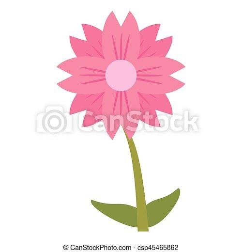 amaryllis flower natural image - csp45465862