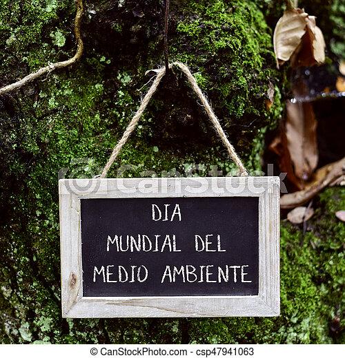 ambiente, texto, día, mundo, español - csp47941063