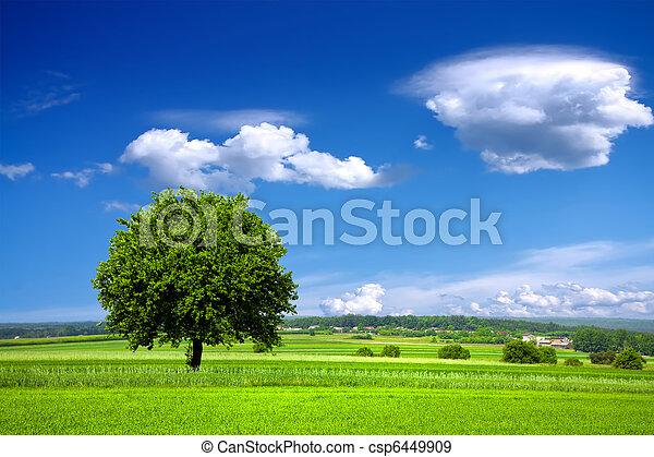 Medio ambiente verde - csp6449909