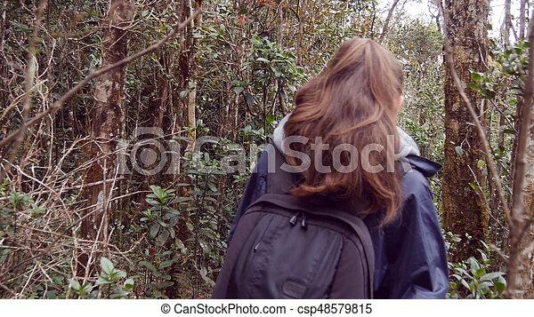Sigue a una turista femenina con mochila caminando por el bosque tropical. Una joven con impermeable yendo a un sendero de madera durante el viaje. Una mujer que camina por la selva. Vista trasera - csp48579815