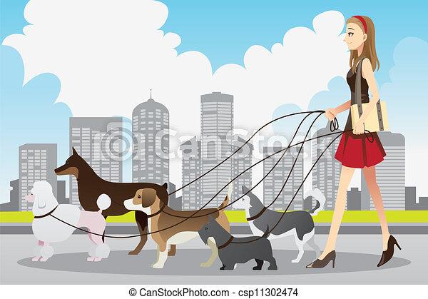 Perros paseantes - csp11302474