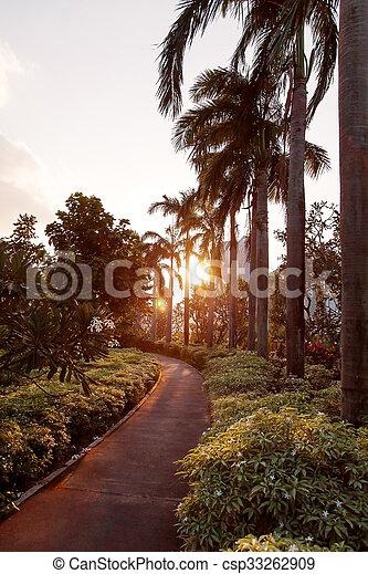 Atardecer en los jardines de la bahía, Singapur. El sol brilla a través de palmeras en la carretera. - csp33262909