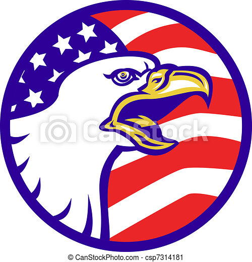 american bald eagle screaming with usa flag illustration of rh canstockphoto com