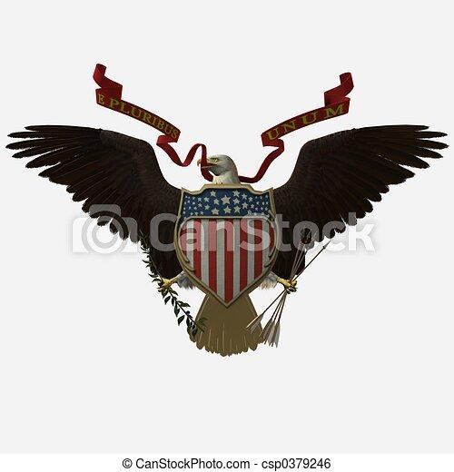 American Bald Eagle Accipitridae The American Bald Eagle United