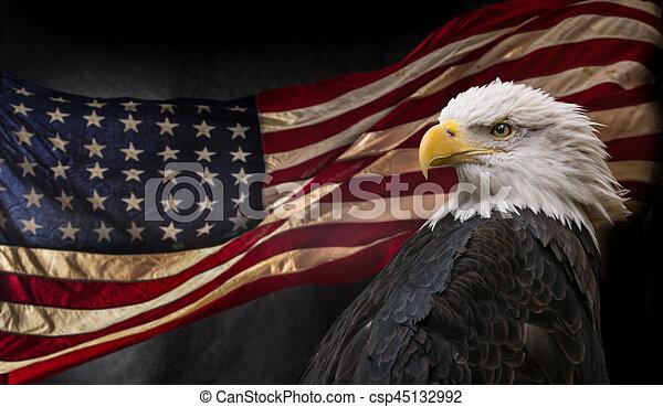 American Bald Eagle With Flag American Bald Eagle Symbol Of