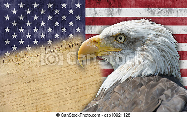 American flag and bald eagle - csp10921128
