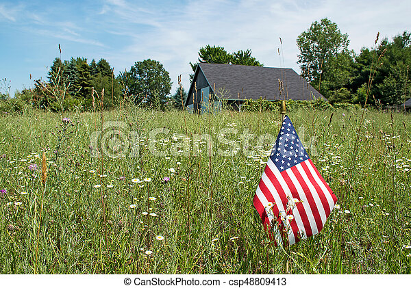 American flag and wildflowers - csp48809413