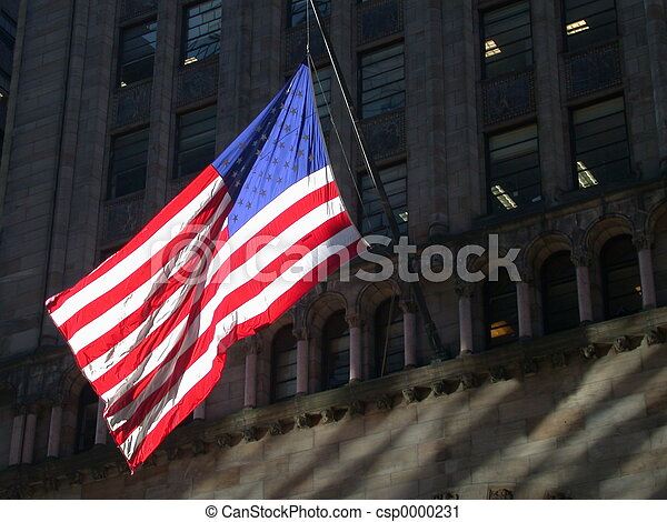 American Flag in NYC - csp0000231