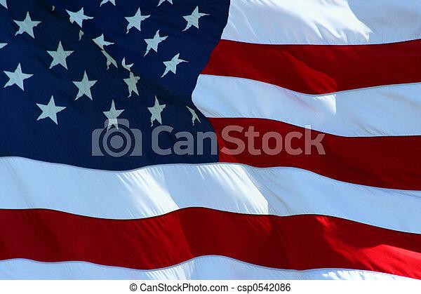 American Flag - csp0542086