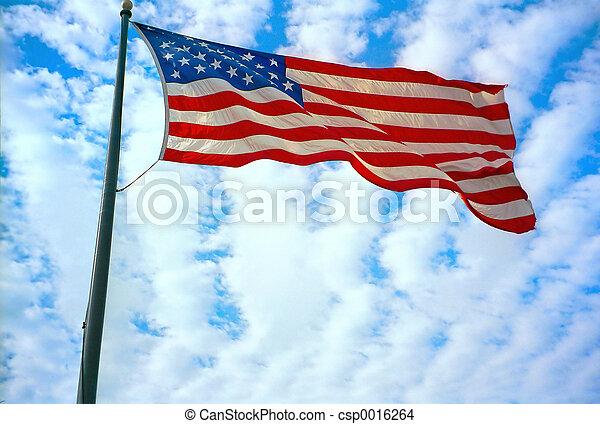 American Flag - csp0016264