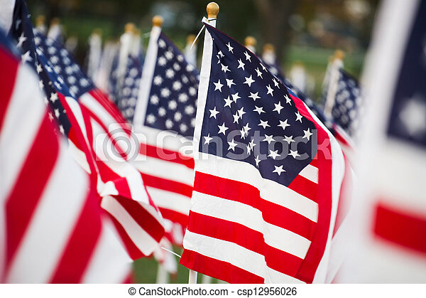 American flags - csp12956026
