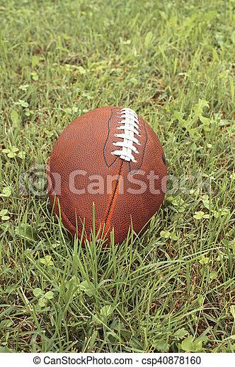 American football ball on a grass. - csp40878160