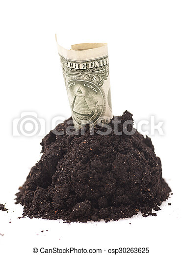 American One dollar grow from Pile heap of soil on white - csp30263625