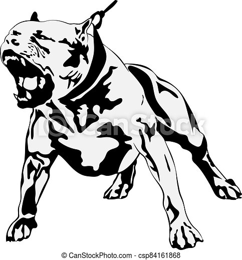 American Staffordshire Bull Terrier Clipart Vector And Illustration 142 American Staffordshire Bull Terrier Clip Art Vector Eps Images Available To Search From Thousands Of Royalty Free Stock Art And Stock Illustration Creators