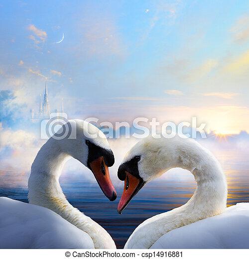 amor, agua, par, flotar, cisnes, día, salida del sol - csp14916881