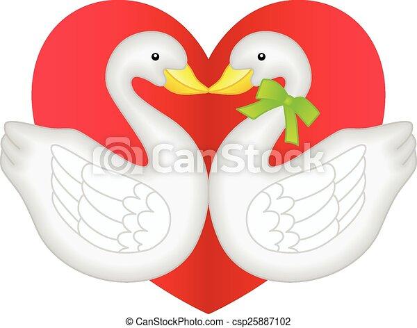 Una pareja de cisnes enamorada - csp25887102