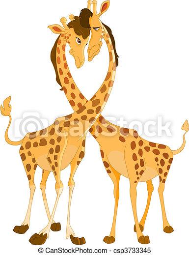 amour, girafes - csp3733345