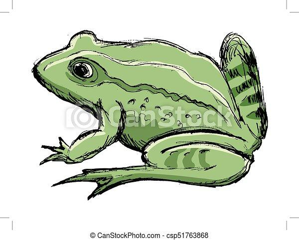 Amphibie crapaud animal croquis crapaud image main - Dessin de crapaud ...