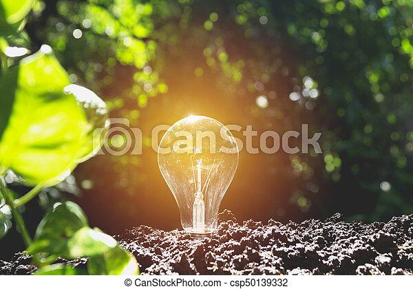 ampoules, concept, bulbs., lumière, créativité, idée, one., incandescent - csp50139332