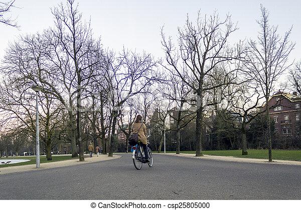 AMSTERDAM - FEBRUARY 06: people in Vondelpark, a public urban pa - csp25805000