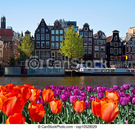 Ein Kanal in Amsterdam - csp10528029
