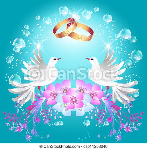 anéis, dois, pombas, casório - csp11253048