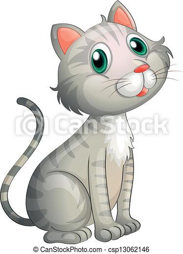 An adorable cat - csp13062146
