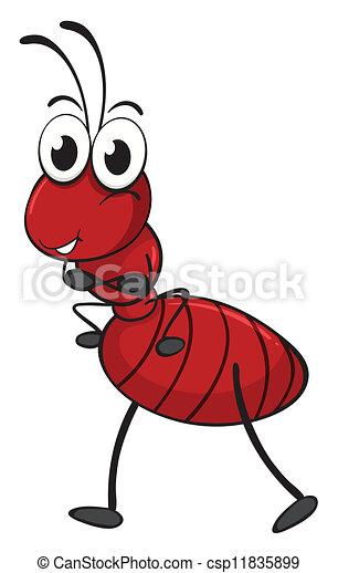 an ant - csp11835899