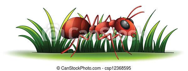 An ant - csp12368595