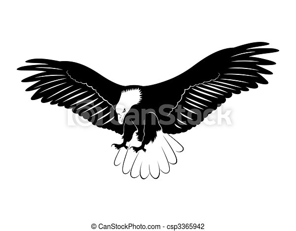 an eagle with wings open illustration of an eagle flying